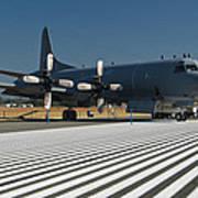 Lockheed Cp-140 Aurora Poster