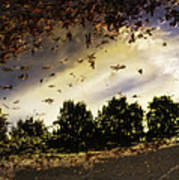 Autum Colors  Earth Water Air Poster