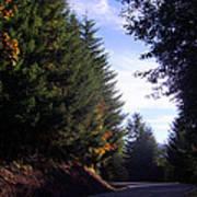 Autumn 12 Poster