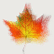 Autumn Abstract Colorful Orange Green Yellow Nature Fine Art Photograph Digital Painting Poster