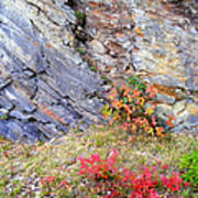 Autumn And Rocks Poster