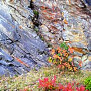 Autumn And Rocks Vertical Poster