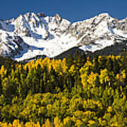 Autumn And Snow Covered Peaks North Poster