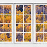 Autumn Aspen Trees White Picture Window View Poster