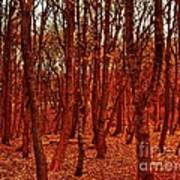 Autumn At Formby Woods  Poster