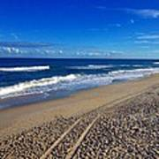 Autumn Carolina Beach Poster by Joan Meyland