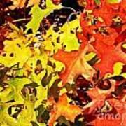 Autumn Celebration Poster