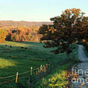 Autumn Color On Rolling Hills And Farmland Poster