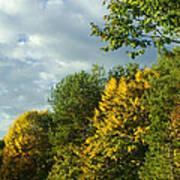 Autumn Colors 6 Poster