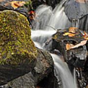 Autumn Colors On Big Crabtree Creek Poster