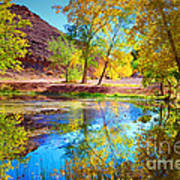 Autumn Colours In Moab Poster