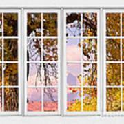 Autumn Cottonwood Tree Longs Peak White Window View Poster