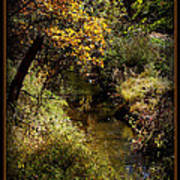 Autumn Creek Poster