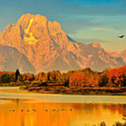 Autumn Dawn At Oxbow Bend Poster