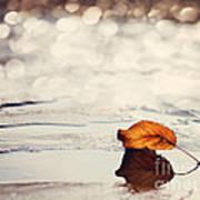 Autumn Poster by Diana Kraleva