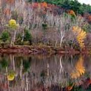 Autumn Foliage River Reflection Poster