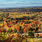 Autumn Glory Landscape Poster