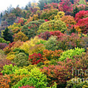 Autumn Highland Scenic Highway Poster