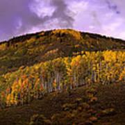 Autumn Hillside Poster