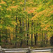 Autumn In Door County Poster
