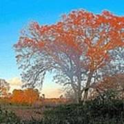 Autumn In Georgia Poster