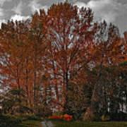 Autumn In Mt Vernon Poster