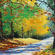 Autumn In Mt Wilson Poster by Graham Gercken