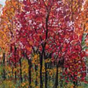 Autumn In Nashville Poster