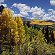 Autumn In New Mexico Poster