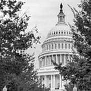 Autumn In The Us Capitol Bw Poster
