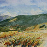 Harvest Time In Napa Valley Poster