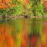 Autumn Iridescence Poster