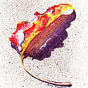 Autumn Leaf On Fire Poster
