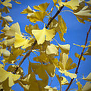 Autumn Leaves Poster by Design Windmill