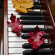Autumn Leaves On Piano Poster