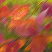 Autumn Leaves On The Abstract Background Poster