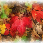 Autumn Leaves Photo Art 04 Poster
