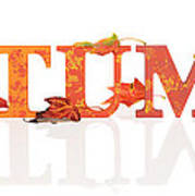 Autumn Letters With Leaves Poster