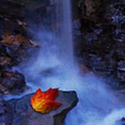 Autumn Light Poster