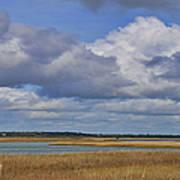 Autumn Marsh At Shell Island Poster