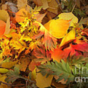 Autumn Masquerade Poster by Martin Howard
