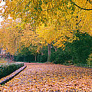 Autumn - New York City - Fort Tryon Park Poster