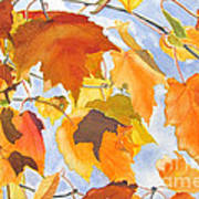 Autumn Outside My Window Poster