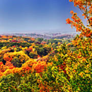 Autumn Over The Rolling Hills Poster