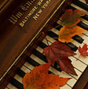 Autumn Piano 11 Poster