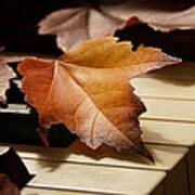 Autumn Piano 13 Poster