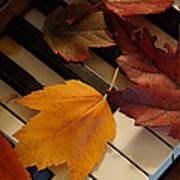 Autumn Piano 2 Poster
