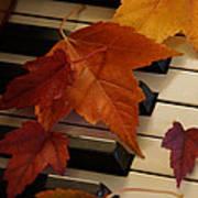 Autumn Piano 6 Poster