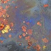 Autumn Puddle Poster