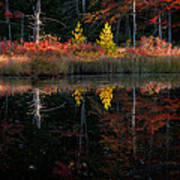 Autumn Reflections - Red Eagle Pond Poster by Thomas Schoeller